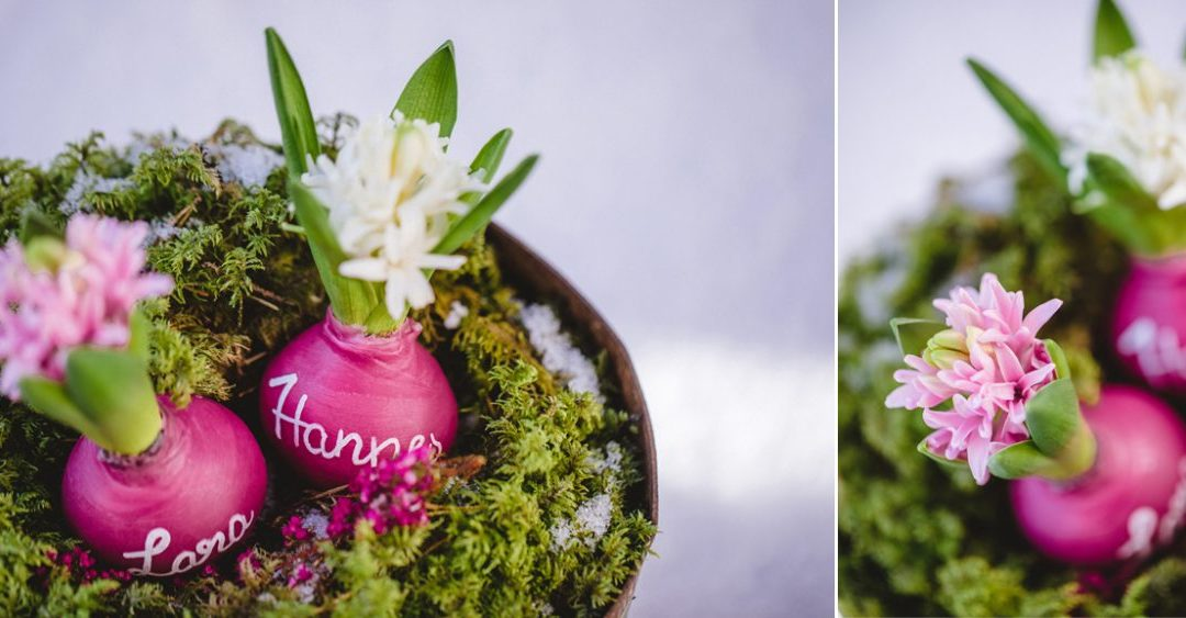 DIY Hochzeit: Hyazinthen in Wachs als Gastgeschenk für eure Frühlingshochzeit